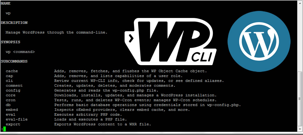 Manage WordPress through WP-CLI